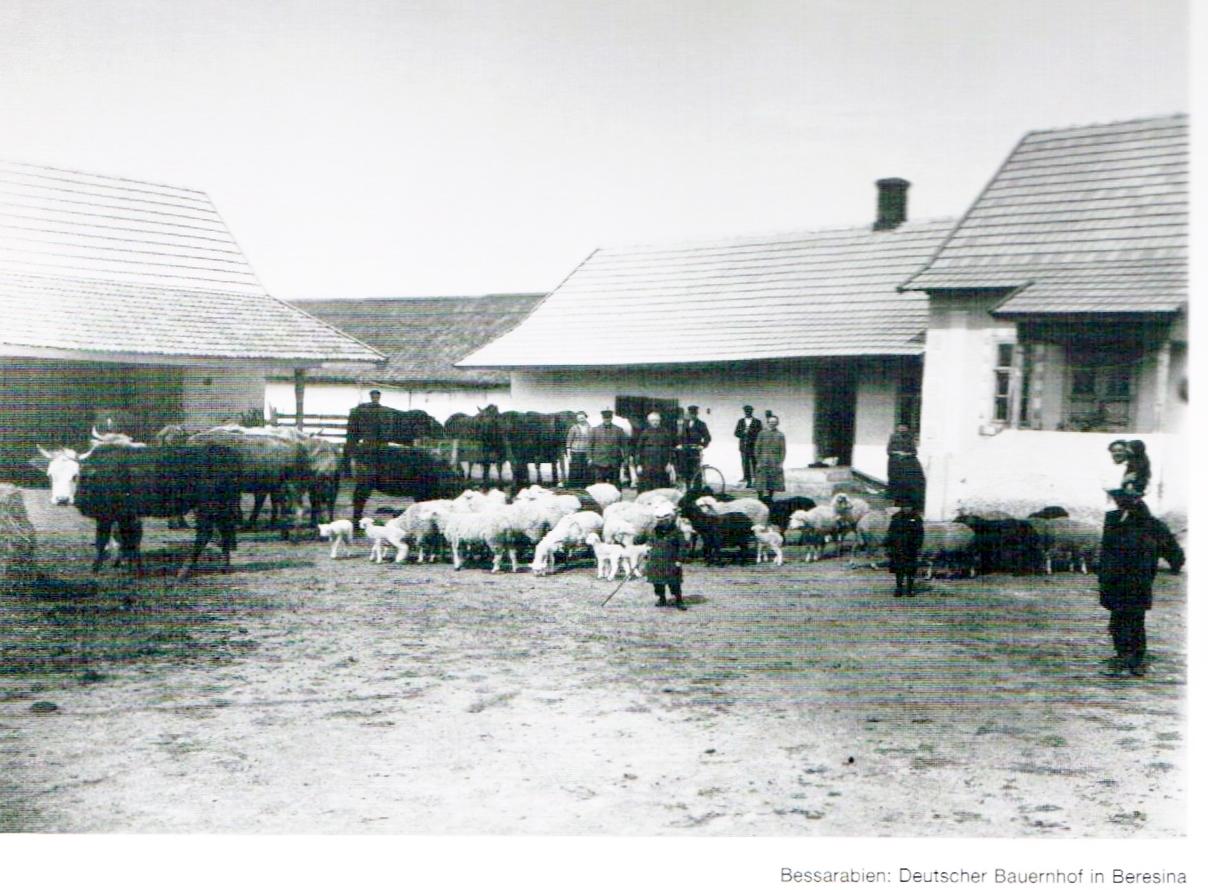 Tierzucht auf dem Bauernhof