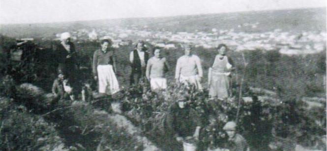 Bessarabien im Weinberg