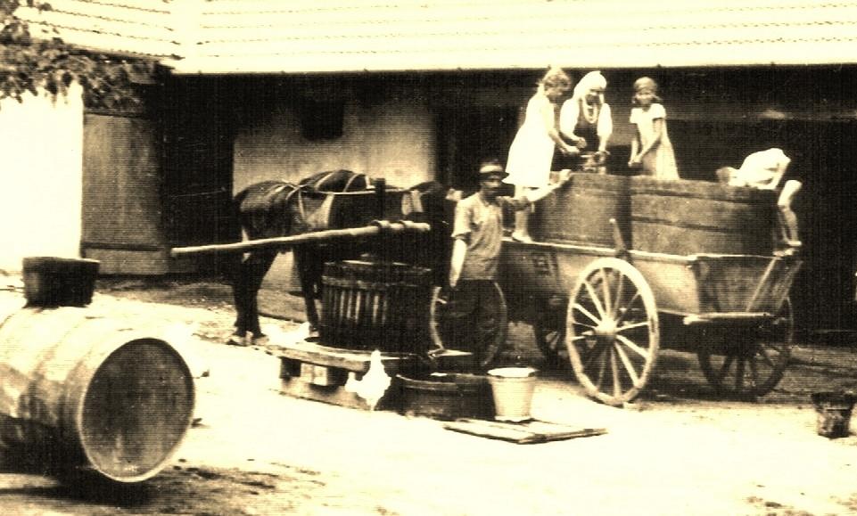 Bessarabien, bei der Weintraubenverarbeitung